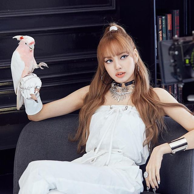 the absolute total assets of Lalisa Manoban is assessed the US $10 Million. This is her individual total assets, aside from the total net worth of BlackPink