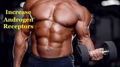 Androgen Receptors